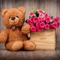 Cute Teddy Bears Puzzle Online